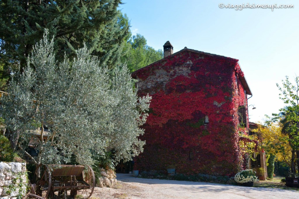 Where to stay in Assisi: the Malvarina Farmhouse