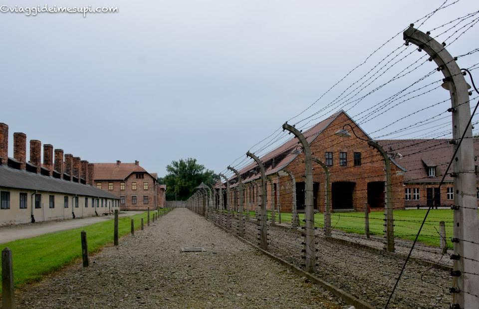 Visitare Auschwitz Birkenau, Auschwitz