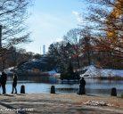Cosa vedere a Central Park: itinerario a piedi nel polmone verde di New York